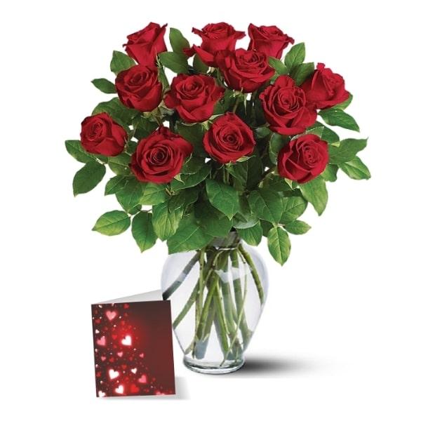 Red Roses Greetings