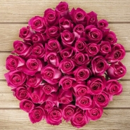 50 HOT PINK Roses
