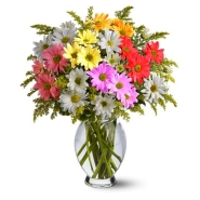 Classic Daisy Bouquet