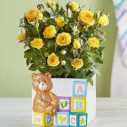 Baby Blocks Playtime Roses