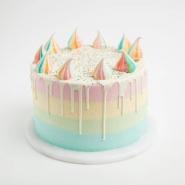 Delicious Rainbow Chocolate Cake