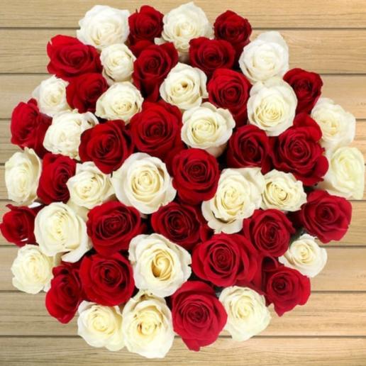 50 Red Orange & White Roses