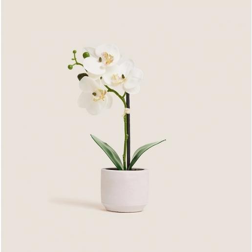 Artificial Small Orchid in Ceramic Pot