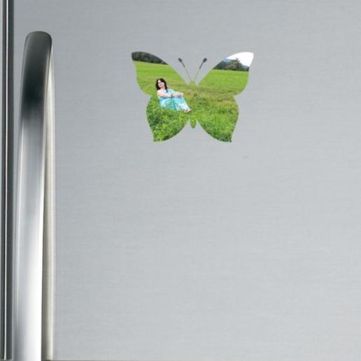 Butterfly Shaped Fridge Magnet