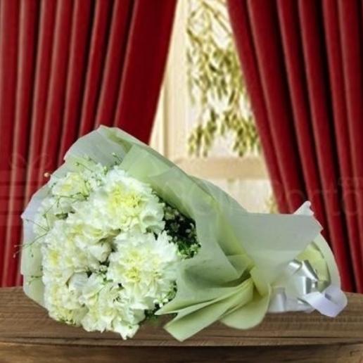 Fanciful Carnation