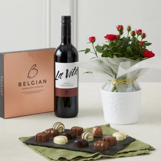 Rose Plant with Red Wine and Chocolates