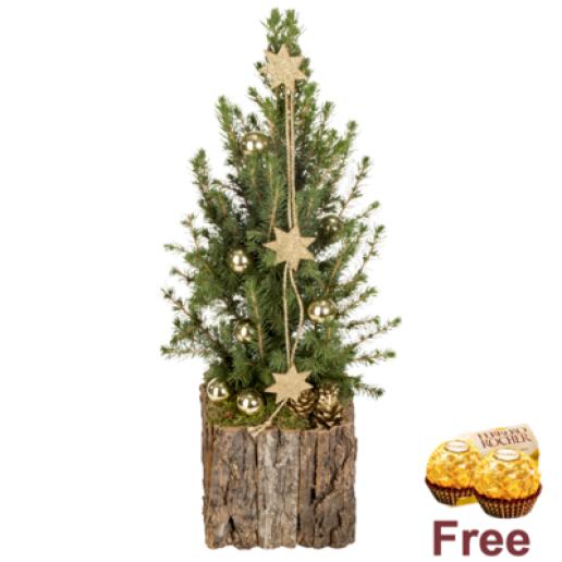 X-Mas Tree Heimat